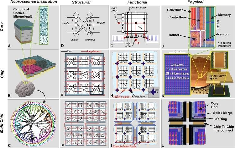 脑芯编:摆脱冯·诺依曼的深度学习硬件