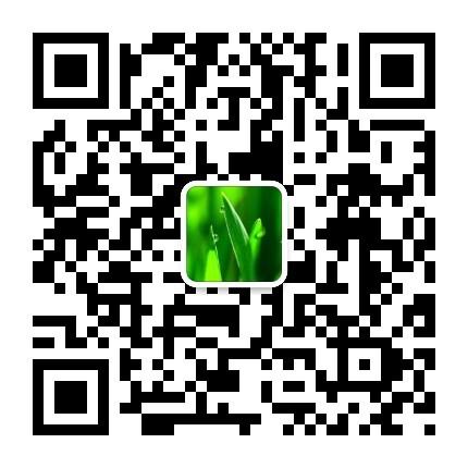 ORA-12560: TNS: 协议适配器错误  常见原因