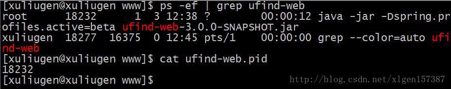 使用Jenkins配置SpringBoot的自动化构建