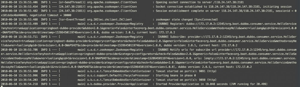 使用Docker容器化SpringBoot+Dubbo应用的实践