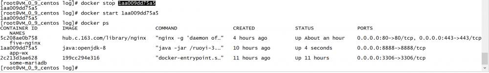 『中级篇』docker之java容器运行外置springboot-jar(番外篇)(79)
