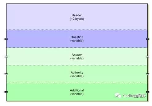 Java构建TCP/IP协议:DNS,域名解析协议系统的运行流程