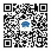 Java基础系列-Java8 Stream 简明教程