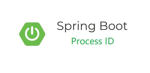你知道如何自动保存 Spring Boot 应用进程号吗