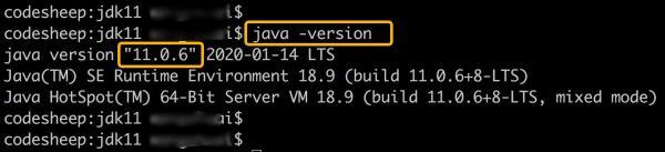 对不起我拖后腿了!我才刚用上Java 11
