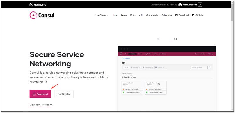 微服务系列之 Consul 服务注册中心