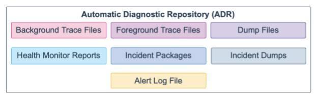 Oracle Database 19c 技术架构(三)