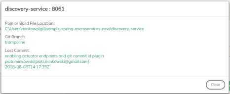 微服务本地开发管理工具——Trampoline