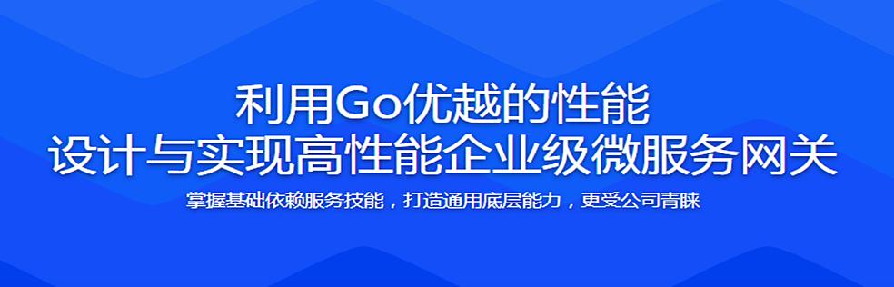 利用Go优越的性能 设计与实现高性能企业级微服务网关 完整无密